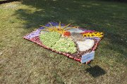 Floristiniai kilimai ''Savas kraštas gražiausias''