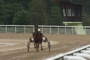Tarptautinės ristūnų žirgų lenktynės Utenos hipodrome