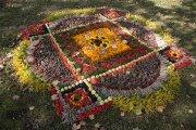 """Floristiniai kilimai """"Išauskim margą raštą"""""""