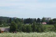 Utenos panorama nuo Grybelių pusės