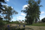 Krašuonos parkas