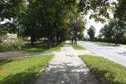J. Basanavičiaus gatvė