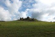 Užpalių piliakalnis