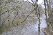 Patvinęs Utenėlės upelis