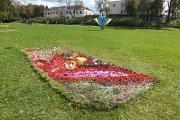 Floristiniai kilimai miesto sode