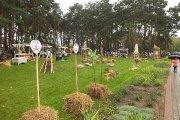 Amatų sodas