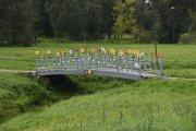 ''Tiltas namo''. Vyžuonos parko tiltų floristinės kompozicijos