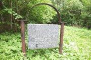 Žydų kapinės Šilinės miške