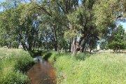 Krašuonos upelis