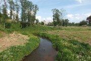 Utenėlės upelis Vyžuonos parke