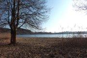 Prie Vyžuonaičio ežero